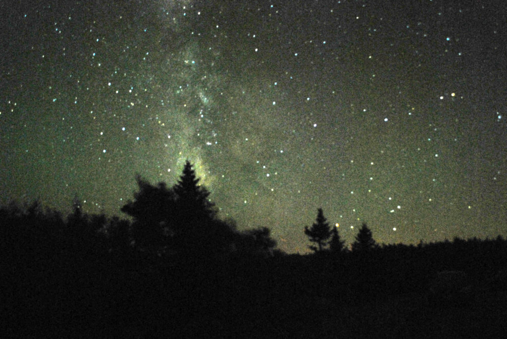How and why to reduce light pollution on your property