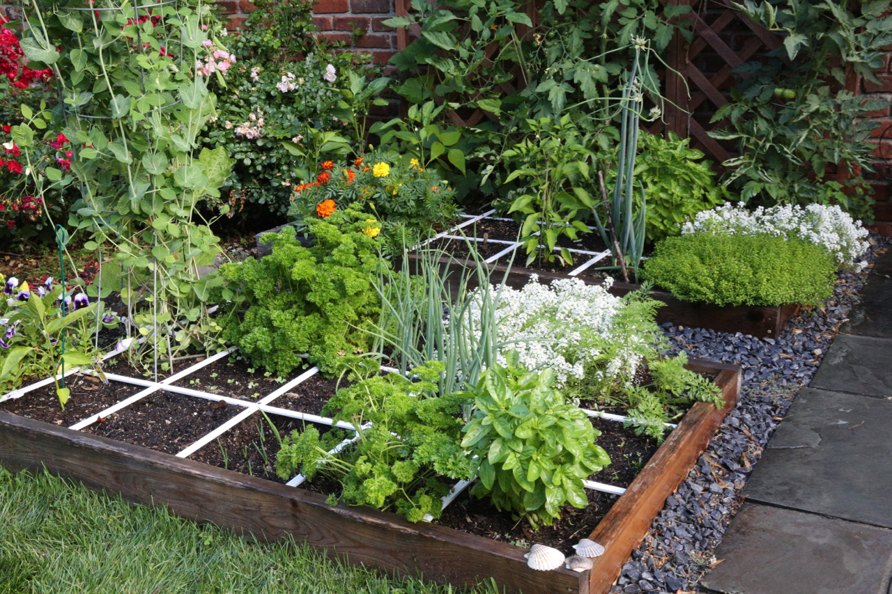 What Is Square Foot Gardening And Should You Try It This