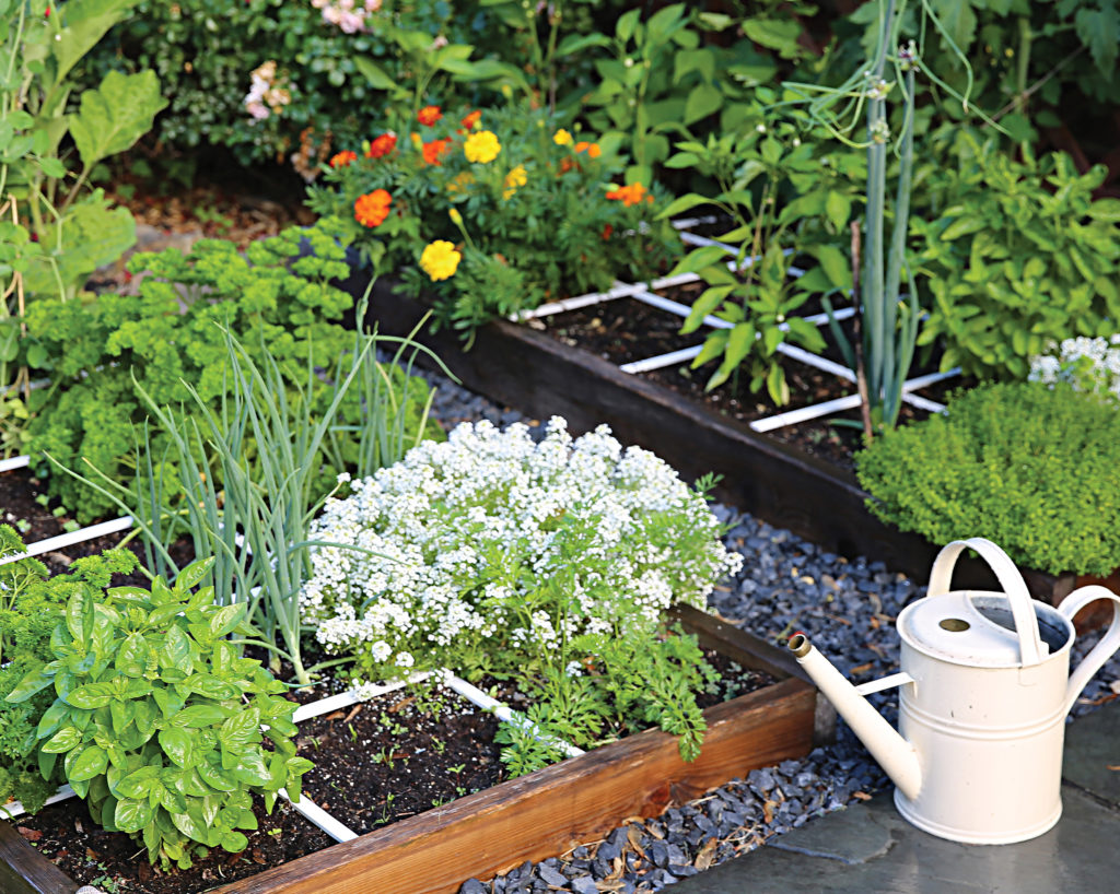 What Is Square Foot Gardening And Should You Try It This Spring Hello Homestead