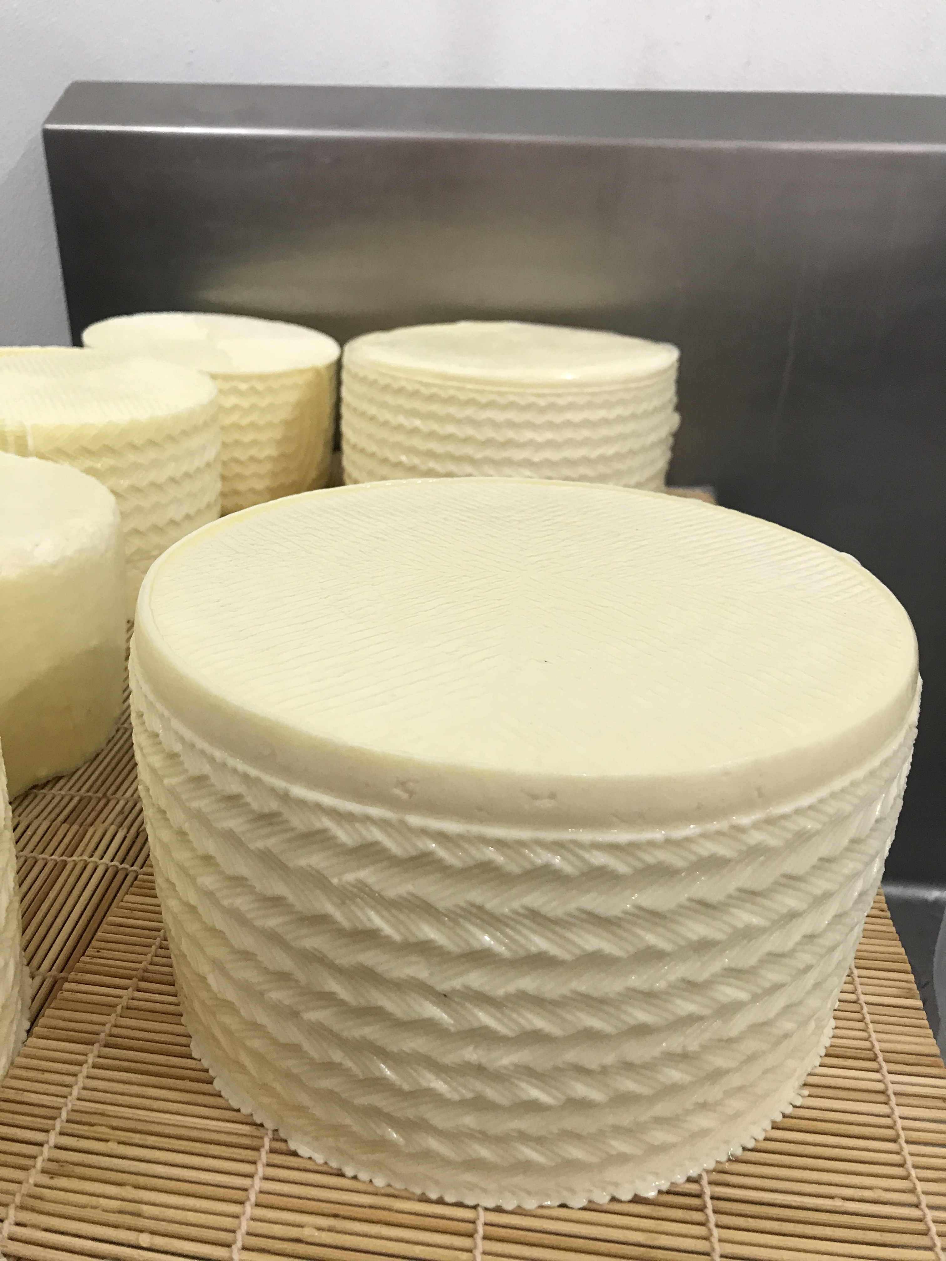 What to make with sheep milk: Cheese, lotion, more! | Hello Homestead