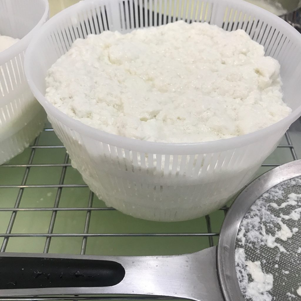Ricotta made out of sheep milk at Whispering Pines Farm and Dairy. | Photo by Debbie Webster