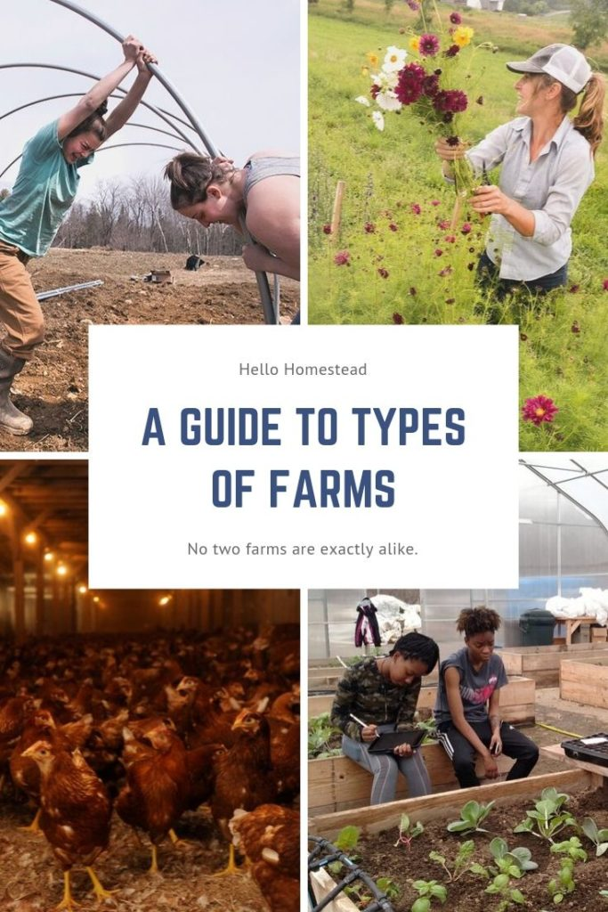 A Guide To Types Of Farms Hello Homestead