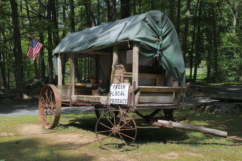 How to start homesteading in Pennsylvania | Hello Homestead