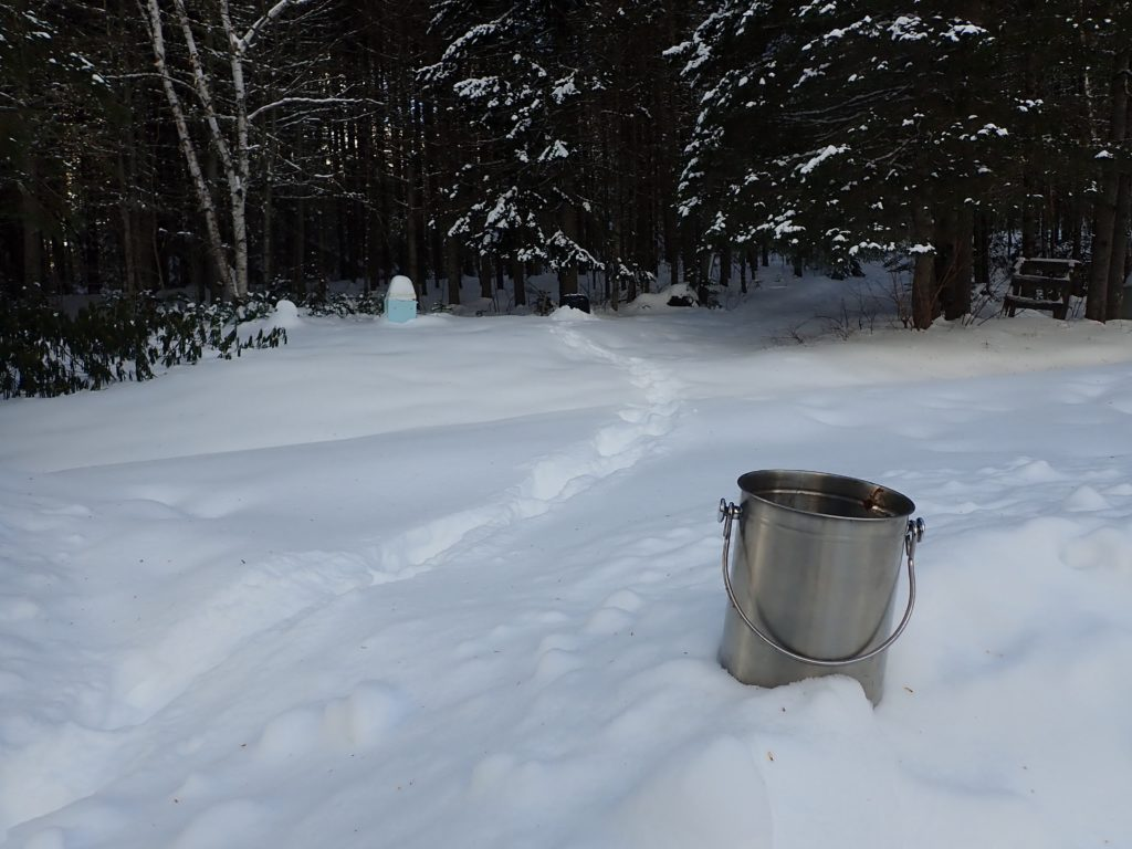 A small silver bucket on a snowbank next to tracks in deep snow leading to a compost bin.