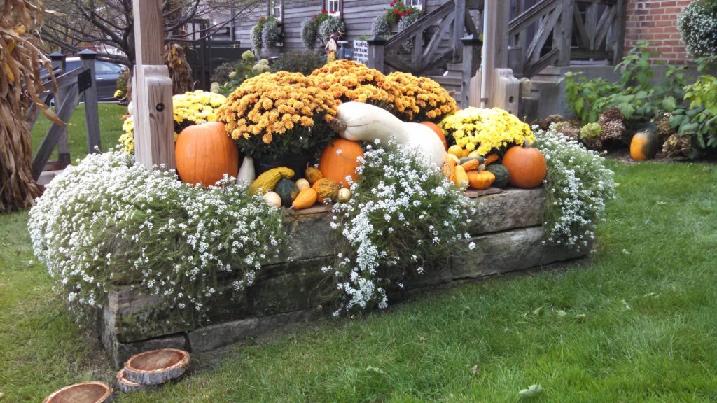 Ripe pumpkins and other gourds displayed on a raised wooden bed with fresh flowers.