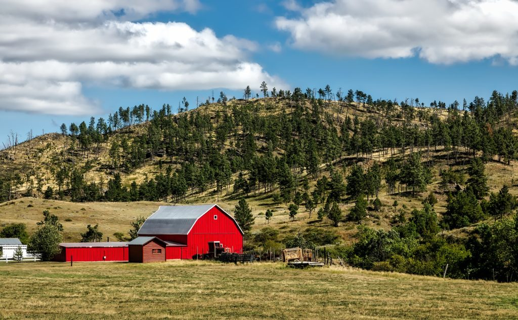 A red barn and outbuildings in front of hills covered in grass and evergreen trees.